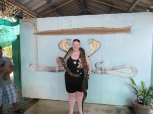 phuket-cobra-show-and